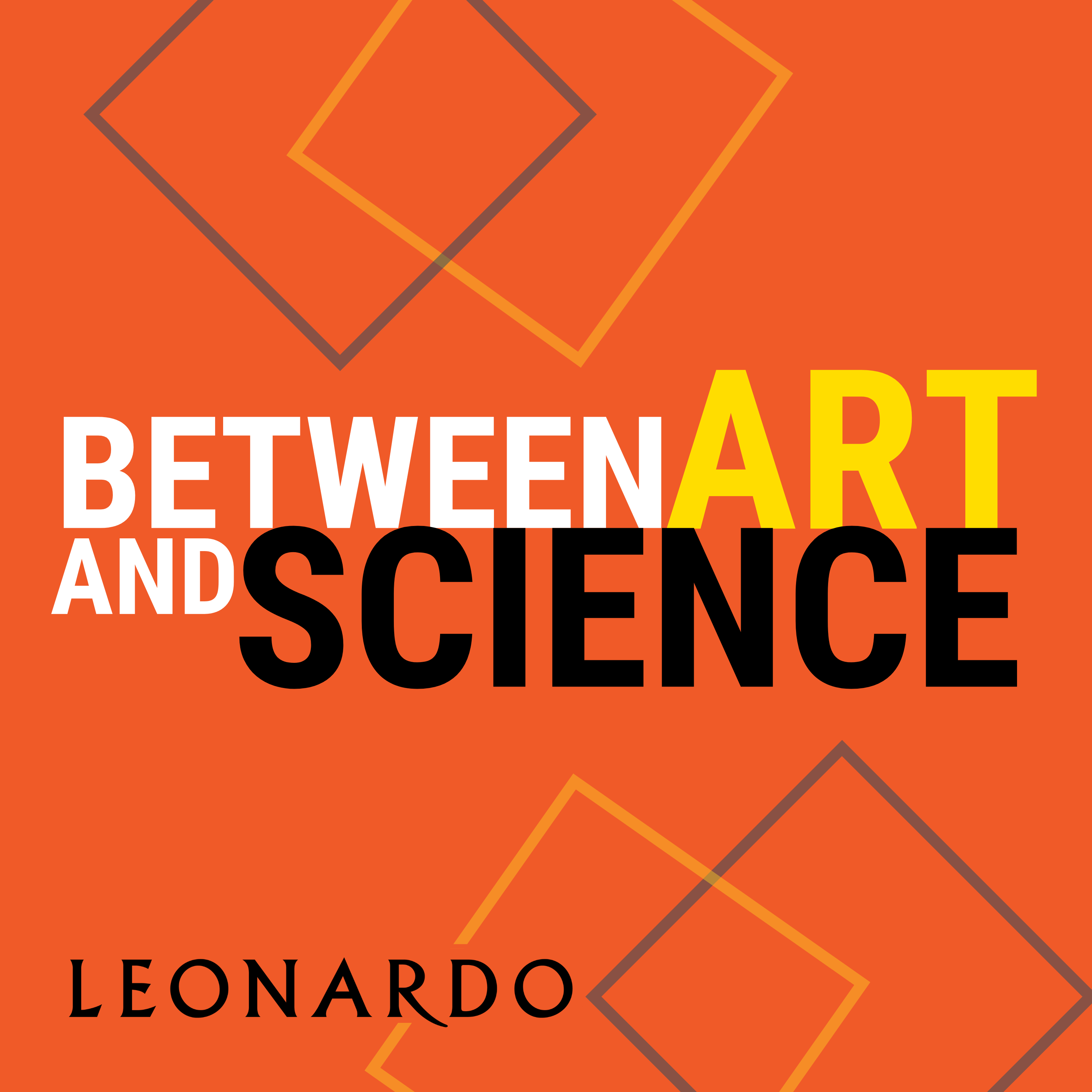 Between Art and Science
